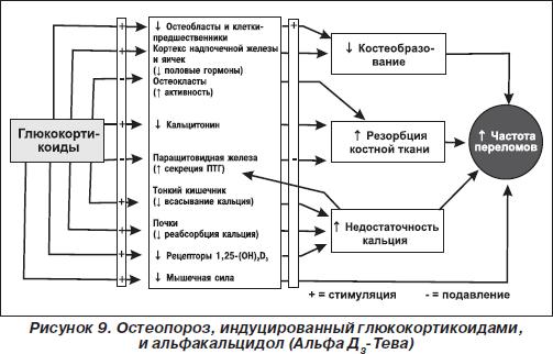 Остеопороз при ревматоидном