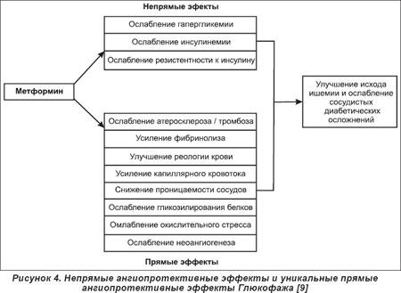 Как действует глюкофаж на организм
