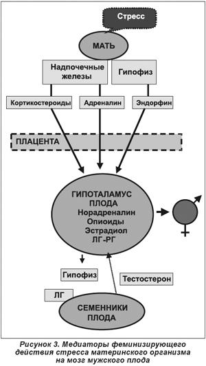 схемы (рис.