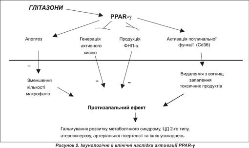 Антогонізм дії параамінбензойної кислоти