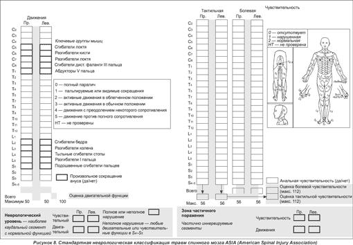 ...системой для определения степени тяжести повреждения спинного мозга была шкала Френкеля (H.L.Frankel...