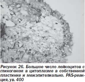 врач диетолог сергиев посад