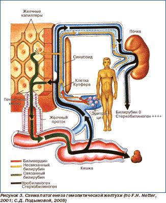 повышен соэ и холестерин