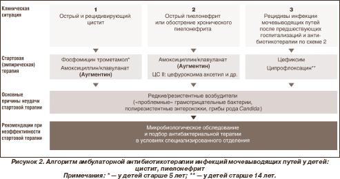 При лечении пиелонефрита у