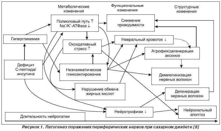 Болезни жимолости съедобной и их лечение
