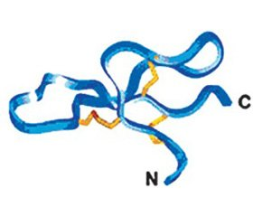 The drugs based on molecular structures of antimicrobial peptides and their therapeutic potential  in the treatment of infectious diseases of the respiratory tract (part 1)