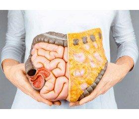 Воспалительные заболевания кишечника: пересматриваются подходы к диагностике итерапии (пресс-релиз)