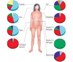 Микробиоценоз организма человека. Факторы, влияющие на его состояние, и коррекция