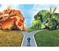 Принципи раціонального харчування