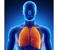Drug management of oxidation-reduction state of the body in respiratory tract diseases (part 5)