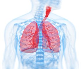 Influence of food products on oxidation-reduction state in diseases of the respiratory tract