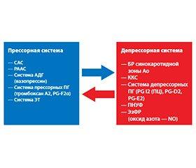 Экстренная медицина и гипертонический криз