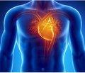 Серцева недостатність із фракцією викиду лівого шлуночка в проміжному діапазоні
