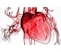 Cardiomyopathies in pregnant women: features of anesthetic management during labor