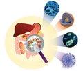Пробіотична корекція у дітей: фокус на моноштамні препарати