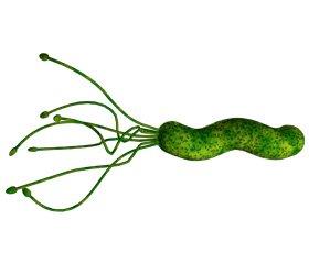 Helicobacter pylori infection in Ukraine. How to increase efficiency of eradication?