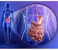 Пробиотическая коррекция функциональных заболеваний желудочно-кишечного тракта у детей