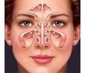 Как помочь вашему носу: совет профессионала