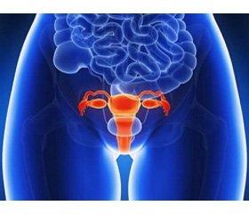 Особливості біоценозу  та функціональної активності вагінального епітелію при місцевому лікуванні атрофічних вікових вагінітів