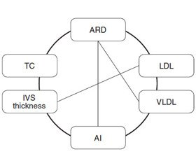 Features of lipid profile and cardiohemodynamics in chronic obstructive pulmonary disease andcomorbidities