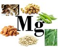 Neurotropic effects of magnesium in the treatment of the pathology of the nervous system