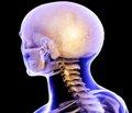 Терапия черепно-мозговой травмы с позиции доказательной медицины