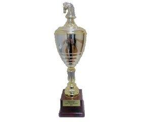 II командний чемпіонат  зі швидких шахів  серед вищих медичних закладів України