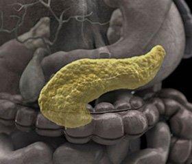 Ферментно-иммунологические аспекты при лечении острых изъязвлений желудка и двенадцатиперстной кишки   у больных острым деструктивнымм панкреатитом