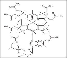Фармацевтическое обоснование комбинации действующих и вспомогательных веществ в составе препарата Мильгамма® ампулы