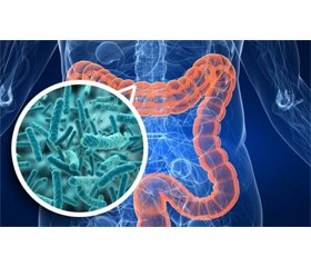 Gut microbiota composition changes associated with obesity: new lights from metagenomic analysis