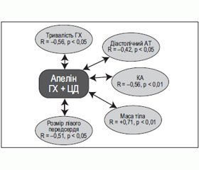 Рівні апеліну-12 крові у хворих на гіпертонічну хворобу з цукровим діабетом 2-го типу та без такого до та після комбінованого лікування