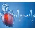 Физиологические основы  применения анализа вариабельности  ритма сердца для выявления групп риска посттравматического стрессового расстройства