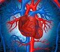 Особливості функціонального стану   серцево-судинної системи у дітей із целіакією