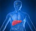 Кріоглобулінемічний васкуліт, асоційований з гепатитом С (клінічне спостереження)