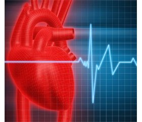 Physical rehabilitation of the first-year students with hypertension in the higher educational institution