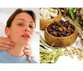 New possibilities of phytotherapy for hypothyroidism