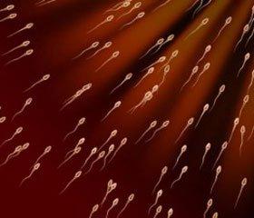 Репродуктивное здоровье мужчин