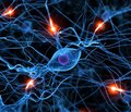 Клініко-електроміографічні стадії денерваційно-реіннерваційного процесу у м'язах кінцівок при ушкодженні периферичних нервів