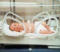 Ранні ентеральне харчування і постнатальний фізичний розвиток недоношених дітей  із дуже малою масою при народженні