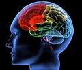 Роль поверхностно-активных и инактивных компонентов биологических жидкостей   в патогенезе острых нарушений мозгового кровообращения (обзор литературы)
