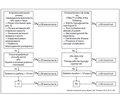 Клінічні настанови з ведення пацієнтів з діабетом та хронічною хворобою нирок стадії 3Б і вище (рШКФ < 45 мл/хв). Положення