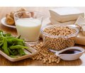 Soy phytoestrogens: efficiency in menopause and potential side effects