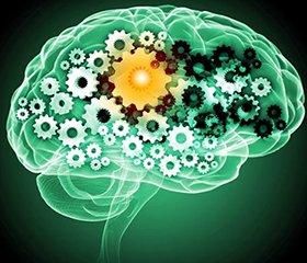 Танакан® в лечении умеренных когнитивных нарушений сосудистого генеза: эффективность, доказанная временем
