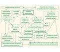Питание как фактор риска и вмешательство при ревматических заболеваниях