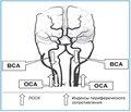 Современное представление о роли ГАМК в коррекции нейрокардиальной патологии