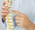 Діагностика та лікування мієлопатії