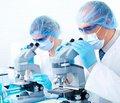 Что уже лечится стволовыми клетками?