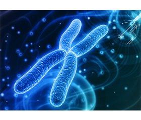 Синдром Шерешевського — Тернера: фенотипова варіабельність хромосомного поліморфізму
