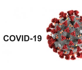 COVID-19: a new etiological factor of Graves' disease?
