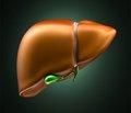 Оцінка ефективності корекції запальних та фібротичних процесів у хворих на хронічний вірусний гепатит С